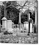 Deep Within Evergreen Cemetery Canvas Print