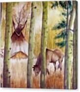Deep Woods Camp Canvas Print