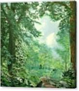 Deep Woods Path Canvas Print