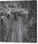 Deep Woods Snow Canvas Print