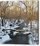 Deer Creek Canvas Print