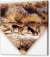 Deer Crossing Two Canvas Print