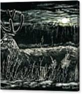 Deer In Moonlight Canvas Print