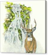 Deer In The Mist Canvas Print