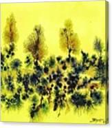 Deforestacion Canvas Print