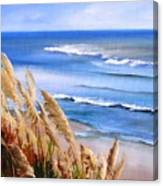 Del Playa Canvas Print