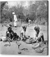 Delhi: Snake Charmers Canvas Print