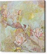 Delicate Magnolias Canvas Print