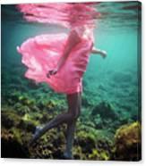 Delicate Mermaid Canvas Print