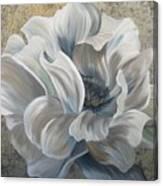 Delicate Reveal Canvas Print