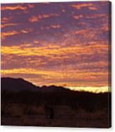 Delightful Sky Canvas Print