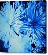 Delightfully Blue Canvas Print