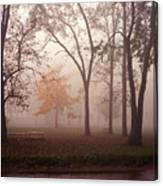 Delphi Park Annarbor Michigan In Fog Canvas Print