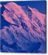 Denali Alpenglow Canvas Print