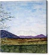 Denali In July Canvas Print
