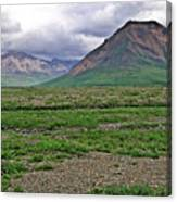 Denali National Park Landscape 3 Canvas Print