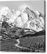 Denali - Number One Canvas Print