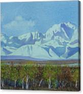 Denali Park Alaska Canvas Print
