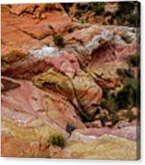 Depth Of The Canyon Canvas Print