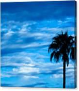 Desert Blues Canvas Print