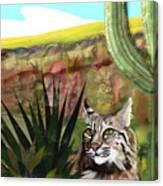 Desert Bobcat Canvas Print