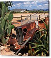 Desert Classic Canvas Print