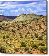 Desert Colors Canvas Print