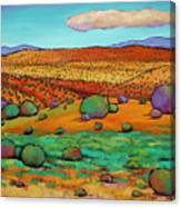 Desert Day Canvas Print