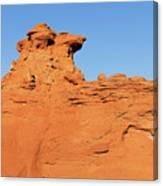 Desert Dog Canvas Print