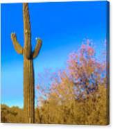 Desert Duo In Bloom Canvas Print