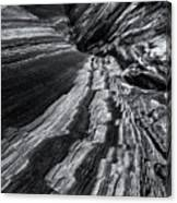 Desert Flow Canvas Print
