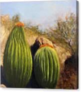 Desert Friends Canvas Print