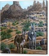 Desert Gypsy's Canvas Print