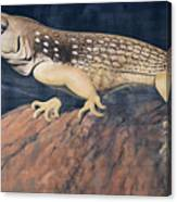 Desert Iguana Mural Canvas Print