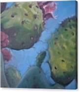 Desert Jewels Iv Canvas Print