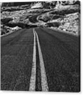 Desert Journey B/w Canvas Print