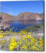 Desert Lake Canvas Print