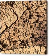 Desert Landscape Canvas Print