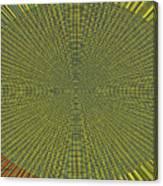 Desert Marigold Flowers Abstract #2 Canvas Print