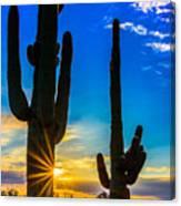 Desert Morning Sunrise Canvas Print