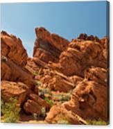 Desert Paradise Canvas Print