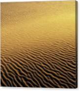 Desert Sands Canvas Print