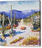 Desert Scene 2 Canvas Print