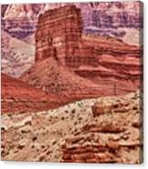 Desert Scene L Canvas Print