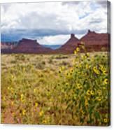 Desert Sunflowers Canvas Print