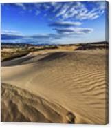 Desert Texture Canvas Print