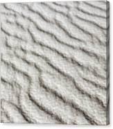 Desert Textures 1 Canvas Print