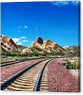 Desert Tracks Canvas Print