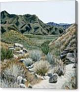 Desert Trail Canvas Print
