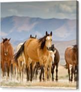 Image of: Fredrick Arthur Desert Travelers Canvas Print Fine Art America Desert Travelers Photograph By Kent Keller